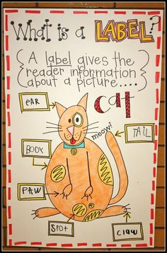 I looooooove this anchor chart. Great supplement when introduction informational text. (From Eberhar