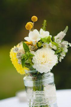 Dahlia freesia jaune et blanc