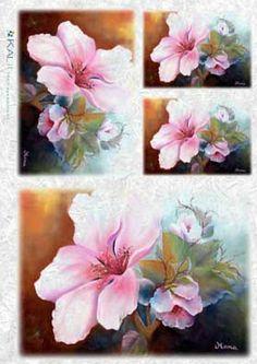 Papier ryżowy Kalit do decoupage flo082 Orchidea Papier ryżowy Kalit - sklep DecoupageArt.pl