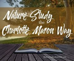Nature study is one of most beloved aspects of the Charlotte Mason method. It is a lovely time spent in the sunshine discovering the beauty in the world