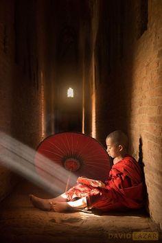 Myanmar: A Luminous Journey - David Lazar Le Tibet, Meditation, Burma Myanmar, Myanmar Travel, Buddha Zen, Buddha Peace, Little Buddha, Buddhist Monk, The Monks