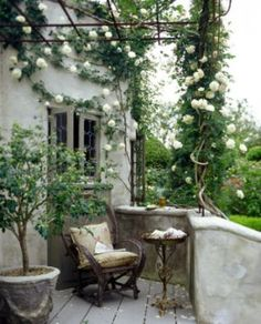 Climbing roses~love this little porch...