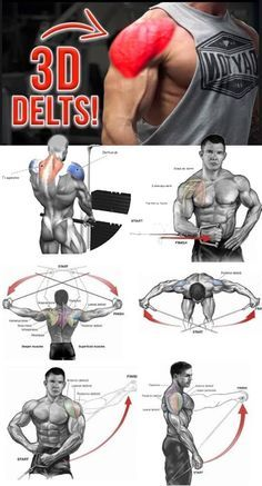Build your shoulders with this workout combining with BULKING STACK that comes with 4 legal steroids and no side effects. Deltoid Workout, Biceps Workout, Muscle Fitness, Fitness Tips, Workout Fitness, Best Shoulder Workout, Shoulder Exercises, Gym Workout Chart, Chest Workouts
