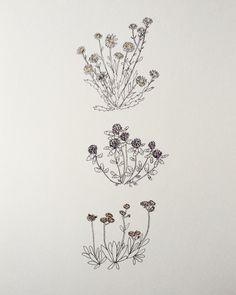 1000drawings - by Chloe Landreville