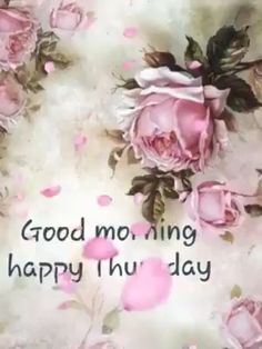 I pray you all have a blessed and happy Thursday! Happy Thursday Images, Good Morning Happy Thursday, Thursday Greetings, Happy Thursday Quotes, Cute Good Morning, Happy Morning, Good Morning Flowers, Thursday Funny, Tuesday Images