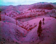"Infra by Richard Mosse, ""Taking Tiger Mountain"""