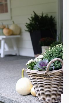 How to decorate your front porch for fall and keep it minimal Front Porch Planters, Fall Planters, Seasonal Decor, Fall Decor, Antique Crocks, Mums The Word, Black Pumpkin, Anne Of Green, Months In A Year
