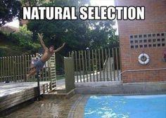 Natural Selection..