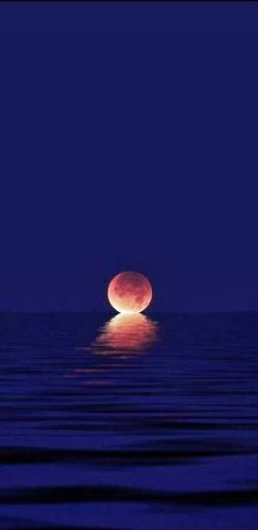When the moon kisses the ocean - Fascinating nature Beautiful Moon, Beautiful World, Beautiful Places, Pretty Pictures, Cool Photos, Happy Pictures, Nature Pictures, Shoot The Moon, Jolie Photo