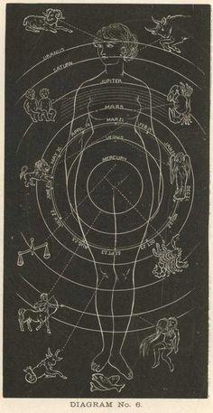 Lady Zodiac, c. 1930