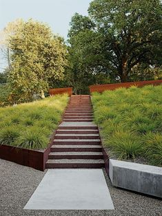 Modern Landscaping By Anthony Paul Landscape Design: Modern Landscaping Garden California Steel Staircase