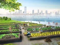 URBAN COMPOSTING FARMS ARE THE FUTURE http://www.seriouswonder.com/urban-composting-farms-are-the-future/