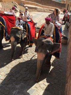 Travel tips from the India 2016 #SPCStudyAbroad class!