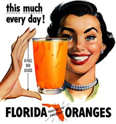 Vintage Florida Orange Juice Advertisement illustration.