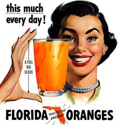 Vintage Florida Orange Juice Advertisement illustration.
