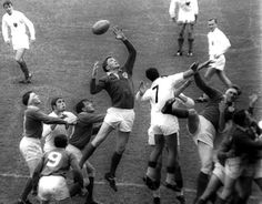 Ken Goodall - Rugby Union and League player, capped 19 times by Ireland, was selected as a replacement for the 1968 Lions tour to South Africa. Changed codes and joined rugby league side Workington. Rugby League, Lions, South Africa, Ireland, Wrestling, Tours, Concert, People, Sports