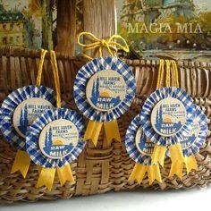 3 Gingham Dairy Cap Prize Ribbon Rosettes Medallion Blue