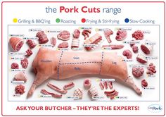 New meat cuts poster butcher shop Ideas Mangalitsa Pork, Venison Deer, Butcher Shop, Meat Butcher, Smoked Bacon, Pork Chops, Pork Steaks, Pork Recipes, Recipies
