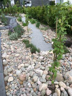 Hyötypuutarha kivien keskellä. http://www.rudus.fi/pihakivet