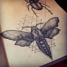 .@jshmcallister | Last photo was blurry so i retook it #moth #sketch #sketchbook #drawing #art ...