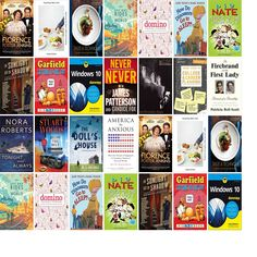 """Saturday, December 24, 2016: The Framingham Public Library has nine new bestsellers and 11 other new books in the Top Choices section.   The new titles this week include """"Kubo and the Two Strings,"""" """"Florence Foster Jenkins [Blu-ray],"""" and """"Everything I Want to Eat: Sqirl and the New California Cooking."""""""
