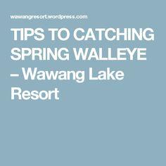 Best walleye lures walleye fishing tips techniques for Barometric pressure fishing cheat sheet