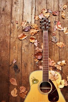 """Another awesome way to use up your hypomania or do on your """"high"""" is to turn to your hobbies. I love playing guitar & piano, but going on a hike or to do Zumba are good, free things to do, too! As long as it's productive, it's a good expenditure of your extra energy, time, & life. Use it wisely!"""