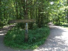 Easy easy access to the city council forests, river and recreational areas