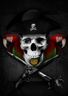 A Pirate's Life by DVerissimo on DeviantArt