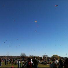 Kite festival <3