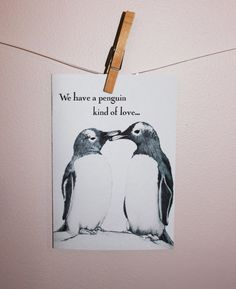 We have a penguin kind of love. Yes, indeed! @Justin Dickinson Tucker