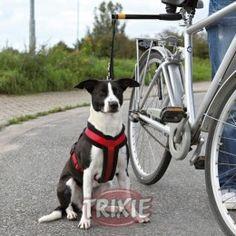 correa para bici