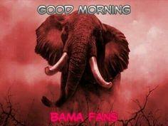 Good morning Bama fans
