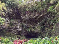 Zur Fern Grotto gelangt man leider nur auf dem Stand Up Paddle oder einer geführten Bootstour. Für die vielen Pflanzen welche um die Wette leuchten hat sich der Ausflug gelohnt.