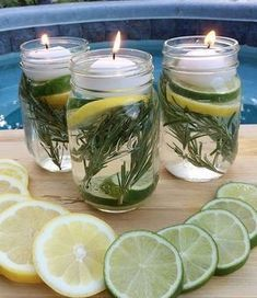 Mason Jar Luminaries - you can put in drops of essential oils such as witch hazel and citronella to ward-off mosquitoes. Natural Candles, Tea Light Candles, Tea Lights, Aloe Barbadensis Miller, Pot Mason Diy, Mason Jars, Autumn Clematis, Stone Plant, Jelly Jars