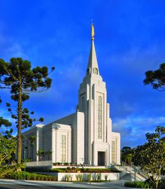 Curitiba, Brazil  LDS  Mormon Temple  I want to visit! Check out that tree on the left. It's so cool. What kind of tree is it?
