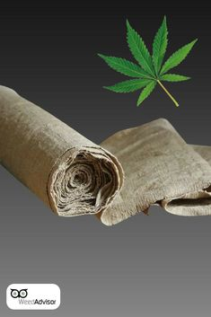 You might be surprised to know that our and are usually made of because are softer as compared to and can hold up twice as long! Cannabis Edibles, Cannabis Oil, Overnight Delivery, Hash Oil, Marijuana Leaves, Buy Weed Online, Ganja, Blue Cheese, Medical Marijuana