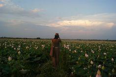 Cambodia  Photography Nicolas Guyard Travel Around The World, Around The Worlds, Cambodia, Celestial, Sunset, Artist, Photography, Outdoor, Outdoors