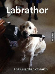 Labrathor: The Guardin Of Earth