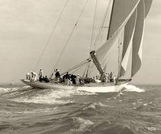 Velsheda - Photo de 1934- Bateau Vintage