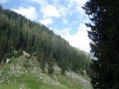 Kumrat Valley in Khyber Pakhtunkhwa.