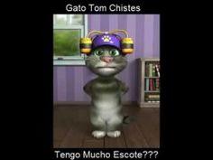 Adivinanzas con el Gato Tom  Videos Divertidos  Pinterest  Toms