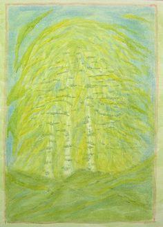 venus planet tree