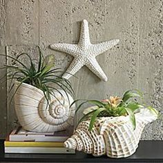 Shell planters hamptons decor, coastal homes, coastal decor, beach cottages Hamptons Decor, Seaside Decor, Beach House Decor, Coastal Decor, Rustic Decor, Seashell Art, Seashell Crafts, Beach Crafts, Starfish