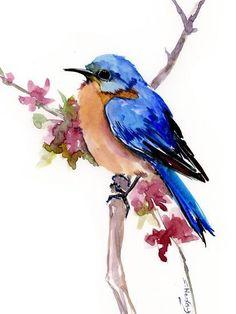 Giclee Print: Bluebird 4 by Suren Nersisyan : Easy Watercolor, Watercolor Animals, Watercolor Landscape, Watercolor Paintings, Watercolor Portraits, Birds Painting Watercolor, Watercolor Flowers, Watercolour, Watercolor Artists