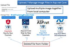 Retrieve and delete static files images in Asp.net Core Delete Image, Filing, Core