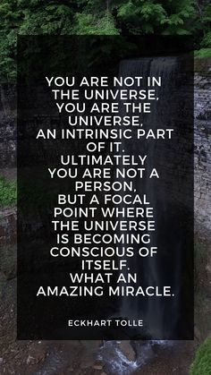 Metaphysical Quotes, Spiritual Quotes, Quotes Positive, Spiritual Life, Earth Quotes, Universe Quotes, Awakening Quotes, Spiritual Awakening, Ekhart Tolle