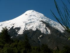 Der Osorno, mit seiner Kuppel aus Schnee und Eis, erhebt sich majestätisch aus dem grünen Regenwald.