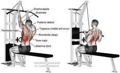 How to Build Muscle: Reverse-grip lat pull-down Good Back Workouts, Chest Workouts, Back Exercises, Gym Workouts, Lat Workout, Free Workout, Training Exercises, Sport Fitness, Muscle Fitness