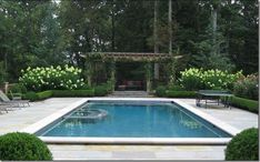 Rect pool with boxwood edging around pool deck